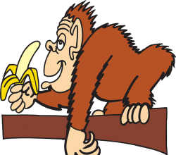 Alles Banane: <br />Frauen mobben Frauen