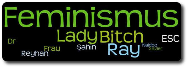 NICHT-Feminist - Header - Lady Bitch Ray, Feminismus