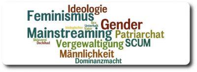 NICHT-Feminist - Feminismus, Ideologie, Gender Mainstreaming - Vergewaltigung