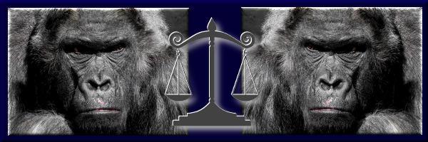 Affen - Justiz - NICHT-Feminist