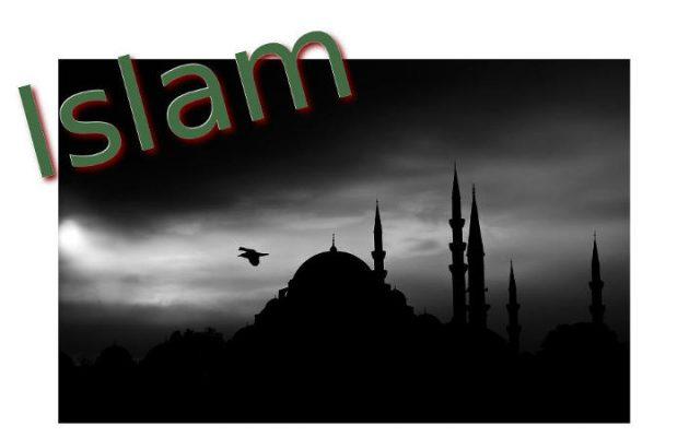 Artikel zur Islamkritik - Seitenheader - Faktum Magazin