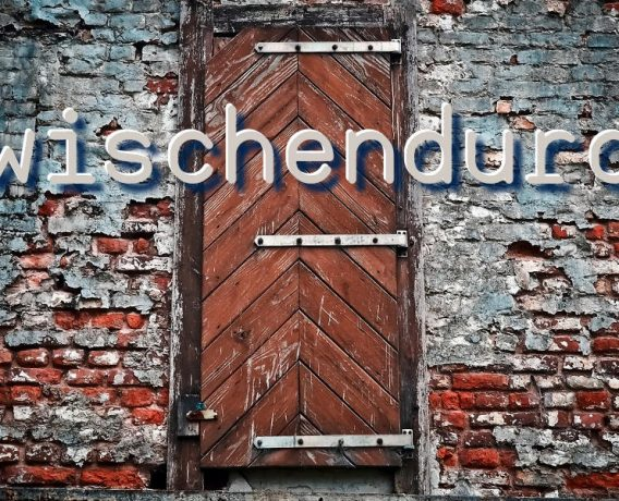 zwischendurch - Wand - Faktum Magazin