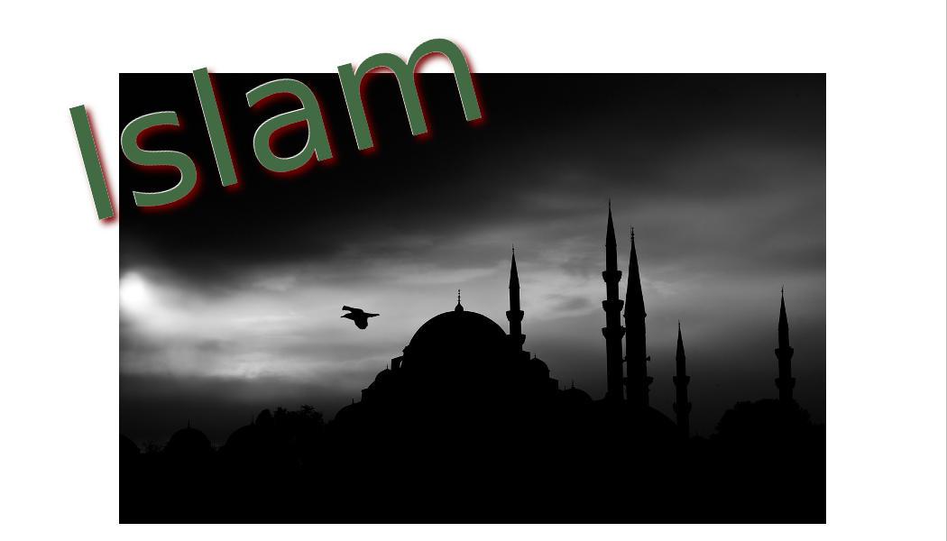 Islamkritik - Faktum Magazin
