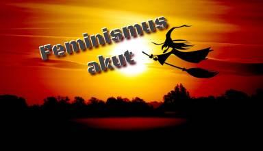 Feminismus akut - Hexe - Feministin - Faktum Magazin