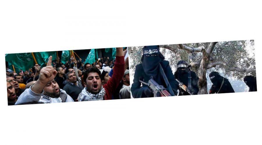Islam-Kritik - Faktum Magazin