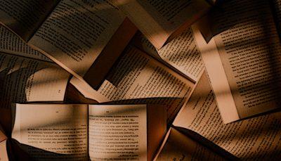 Literatur - Buch - Faktum Magazin