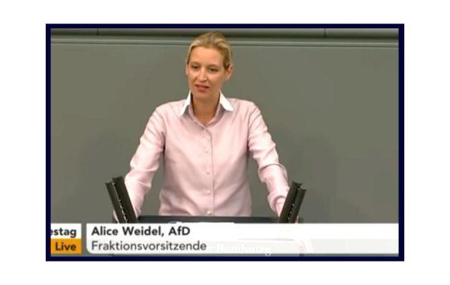 Alice Weidel - Bundestag - Faktum Magazin