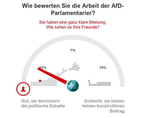 Focus - Arbeit der AfD im Parlament