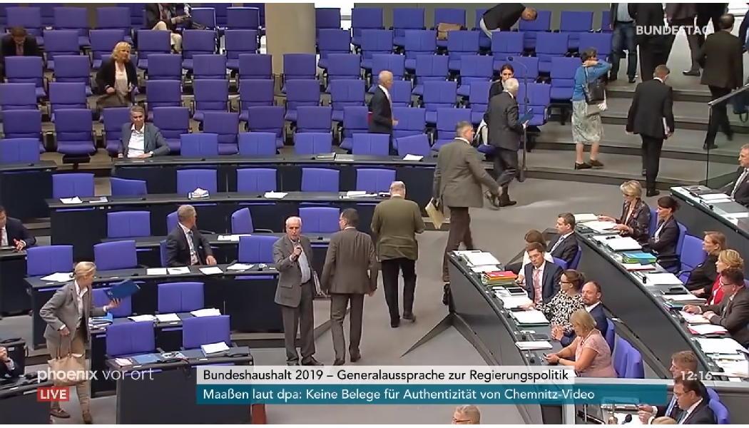 Afd Verlässt Plenarsaal